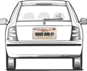 license plate number search